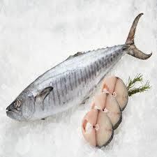 King Fish Large 500g