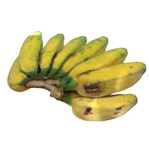 Saba Banana 500g