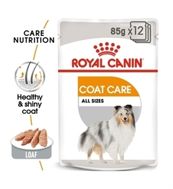 Royal Canin Coat Care Wet Food 85g