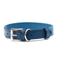 Project Blu Monterey Dog Collar Medium 1pc