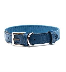 Project Blu Monterey Dog Collar Large 1pc
