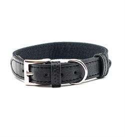 Project Blu Santorini Dog Collar Medium 1pc