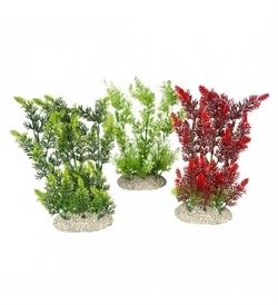 Aqua D'Ella Plant Hydrilla Mixed Colors Large 1pc
