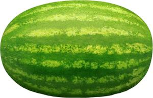 Watermelon Long Iran 500g