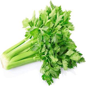 Celery Iran 500g