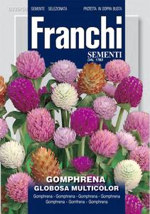Franchi Flower Gomphrena Mixed 1pc