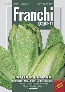 Franchi Vegetable Lettuce Romaine Montare 1pc