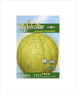 Alta Vegetable Melon Ananas 1pc