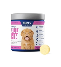 Vetericyn All-In Dog Supplement 1pc