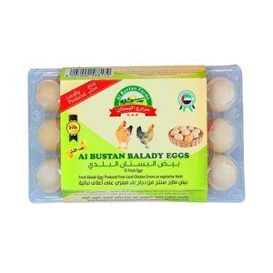 Ova Plus Balady Eggs Box 15pcs