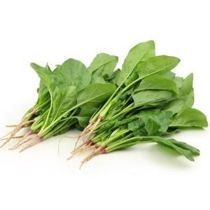 Fresh Spinach Palak 1pack