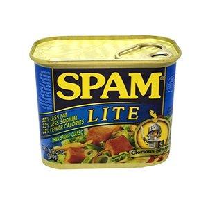 Spam Luncheon Meat Lite Non-Halal 120z