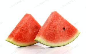 Watermelon Slice 1pkt