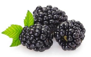 Black Berry USA 1pc