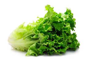 Lettuce Kass 500g