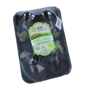 Bio Farm Organic Eggplant 1pc