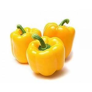 Capsicum Yellow 500g