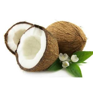 Coconut Fresh 500g