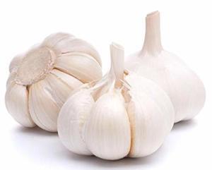 Garlic Big 1pkt
