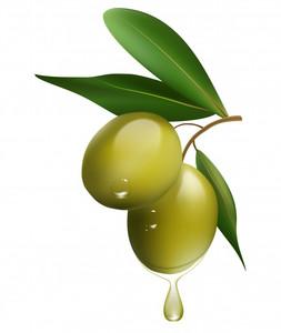 Spanish Green Olives 250g