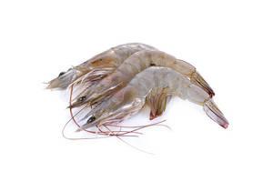 Shrimps Fresh Big 500g