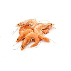 Shrimps Fresh Medium 500g