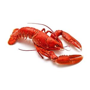 Lobster 500g
