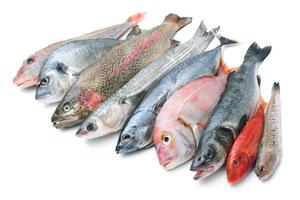 Seafood Mix 500g