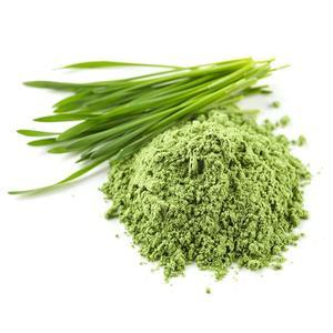 Organic Wheatgrass Powder 4kg