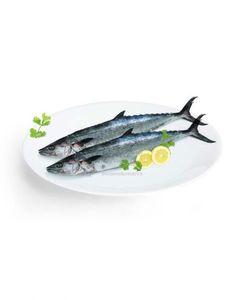 Shani Fish 500g