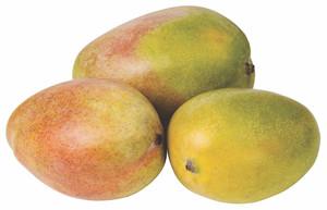 Mango Egypt R2E2 500g