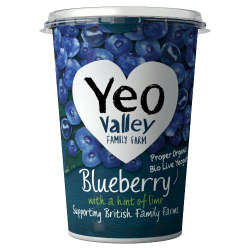 Yeo Valley Blueberry & Lime Yoghurt 450g