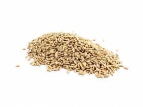 Infinity Foods Spelt Grain 500g