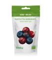 Biokia Organic Dried Berrymix 50g