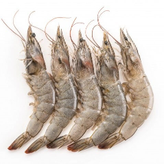 Pakistan Shrimps U15 Fresh 1kg