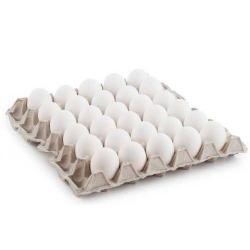 Wadi Hafeet Eggs 30pcs