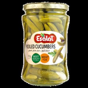 Esalat Cucumber Pickle 680g