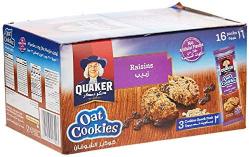 Quaker Oats Cookies Raisins 16x27g