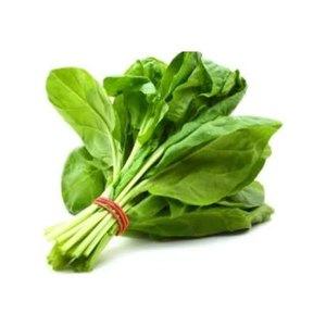 Fresh Spinach Oman 1bunch
