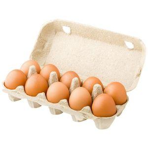 Khanza Fresh Brown Eggs Pack 15pcs