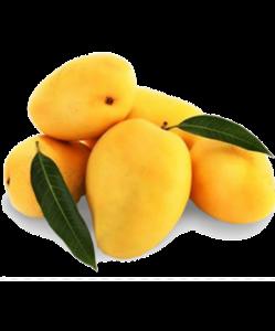 Mango Alphonso 500g