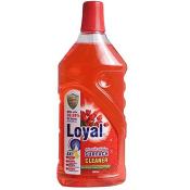 Loyal Surface Cleaner Sprayer 500ml