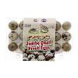 Jumbo Quail Fresh Egg 18s