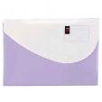 Deli File Envelope Bag 1pack