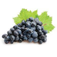 Grapes Black South Africa 500g
