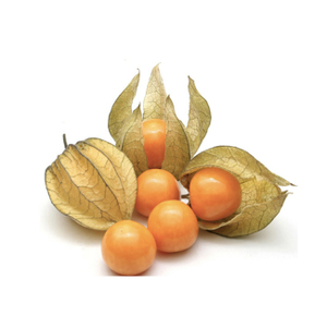 Golden Berry 1pkt