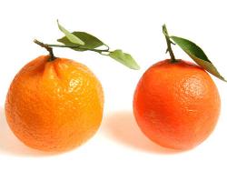 Mandarine 1kg