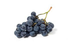Grapes Black South Africa Cup 1pkt