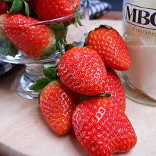 Strawberry Egypt 1pkt