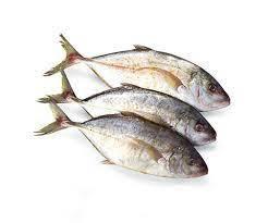 Fish Jesh Gol 500g